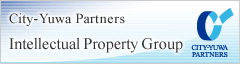 City-Yuwa Partners Intellectual Property Group